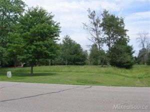 Photo of 00 Wild River  Lot 12, Croswell, MI 48422 (MLS # 20001362)