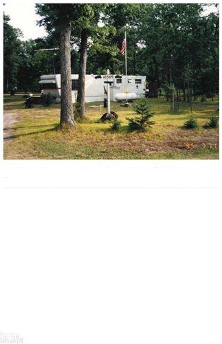 Photo of 10309 Briarwood, South Branch, MI 48653 (MLS # 50004421)