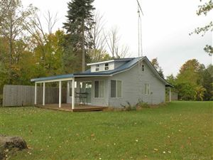 Photo of 5424 Lakeshore, Deckerville, MI 48427 (MLS # 31333423)