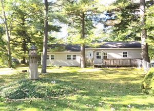 Photo of 4880 CONNIE DR, Caseville, MI 48755- (MLS # 30774453)