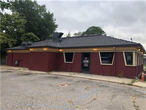Photo of 16835 E WARREN AVE, Detroit, MI 48224-2353 (MLS # 21527470)