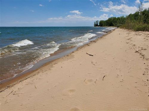 Photo of TBD Lakeshore, Palms, MI 48465 (MLS # 50020494)