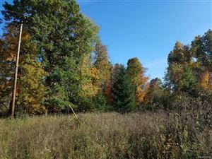 Photo of 0 N WASHBURN RD, Davison, MI 48423- (MLS # 21559515)