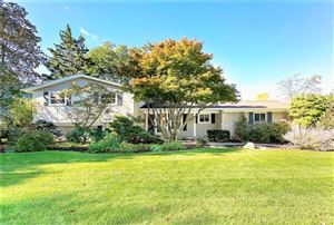 Photo of 18641 E CHELTON DR, Beverly Hills, MI 48025-5220 (MLS # 21525539)
