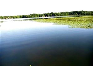 Photo of 3975 SKINNER LAKE RD, Lapeer, MI 48446 (MLS # 21413566)