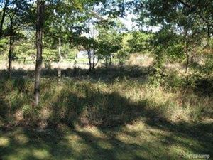Photo of 9740 LOST CHANNEL DR, Pigeon, MI 48755- (MLS # 20596580)