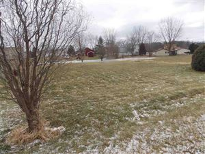 Photo of 8899 Sussex, Onsted, MI 49265 (MLS # 31368603)