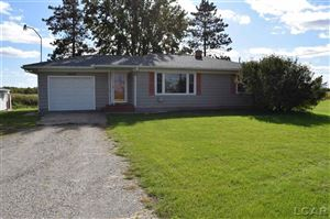 Photo of 3649 W Beecher, Adrian, MI 49221 (MLS # 31397639)