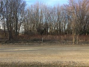 Photo of 0000 Gardner Line, Croswell, MI 48422 (MLS # 31342666)