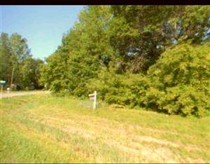 Photo of 0 Busha, Marysville, MI 48040 (MLS # 31366821)