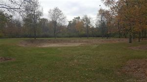 Photo of 3838 Conifer Ct       Lot 10, Burtchville, MI 48059 (MLS # 31333886)