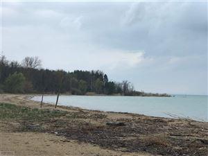 Photo of 7236 Lakeshore, Deckerville, MI 48465 (MLS # 31380897)