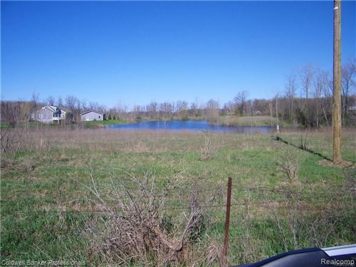 Photo of TURTLE LAKE RD, North Branch, MI 48461- (MLS # 40003902)