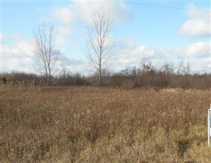 Photo of TBD Mortimer Line, Croswell, MI 48422 (MLS # 31326924)