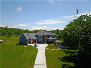 Photo of 8414 ODOWLING, Onsted, MI 49265-9485 (MLS # 21545928)