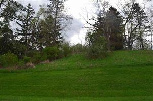 Photo of 0 KNIGHT RD, Grass Lake, MI 49240- (MLS # 21602945)