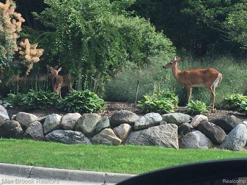 Tiny photo for 4053 HIDDEN WOODS DR, Bloomfield Hills, MI 48301-3130 (MLS # 40146952)