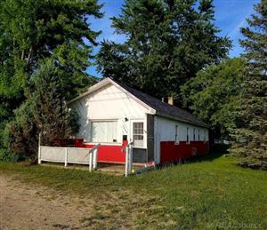 Photo of 7065 Lakeshore, Lexington, MI 48450 (MLS # 31355967)