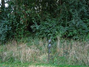 Photo of EASTSHORE, Jerome, MI 49249- (MLS # 21450974)