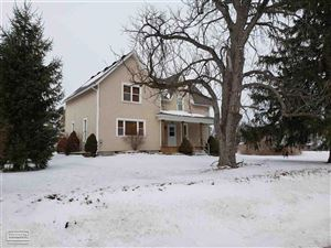 Photo of 10580 Metcalf, Yale, MI 48097 (MLS # 31370986)