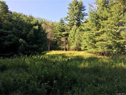 Photo of 173 Bushville Swan Lake Road, Ferndale, NY 12734 (MLS # H4964040)
