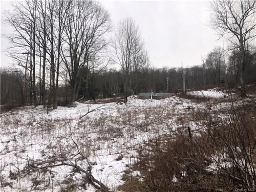 Tiny photo for 0 W Coopers Corners Road, Monticello, NY 12701 (MLS # H6091043)