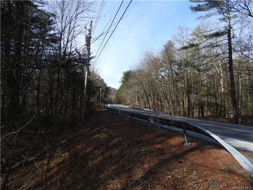 Photo of State Route 97, Pond Eddy, NY 12770 (MLS # H6094045)