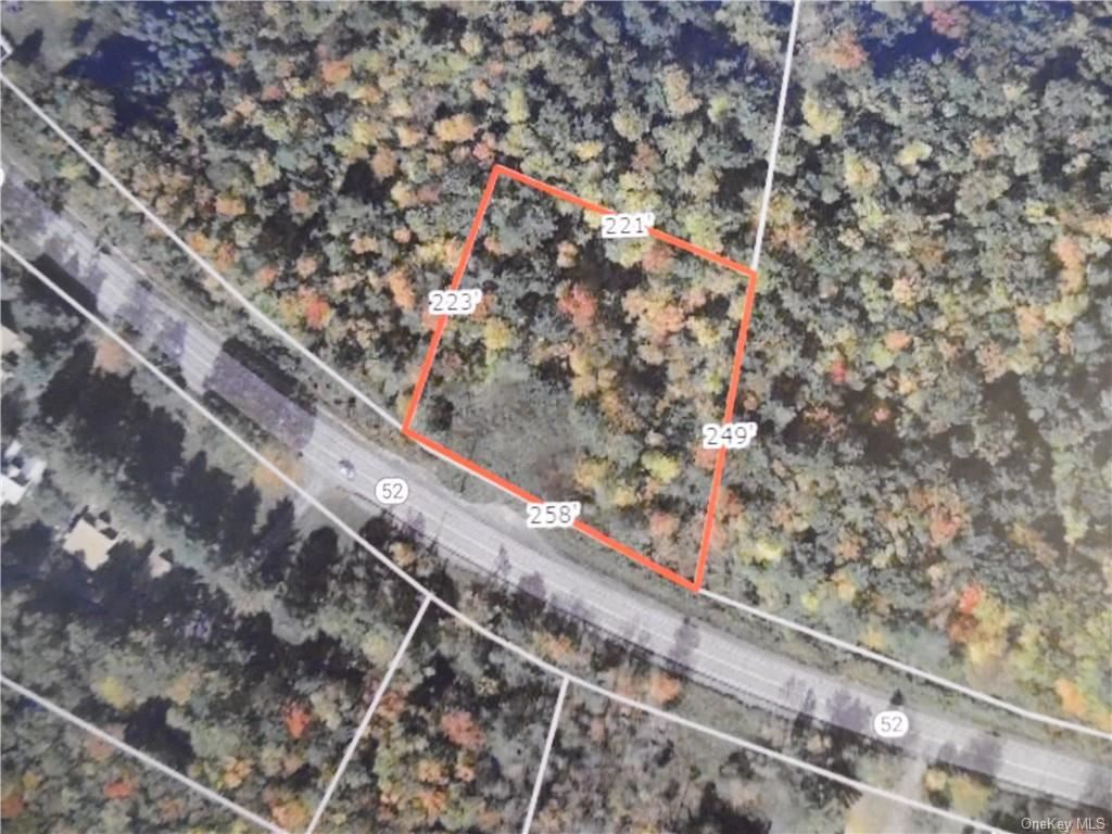 Photo for TBD St Hwy 52, Fallsburg, NY 12733 (MLS # H6074046)