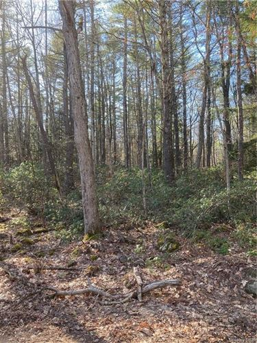 Tiny photo for Forest Pond Road, Narrowsburg, NY 12764 (MLS # H6105067)