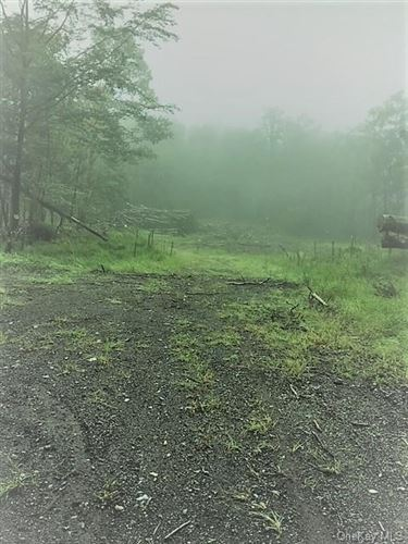 Photo of Hortontown Road, Call Listing Agent, NY 14477 (MLS # H6125068)