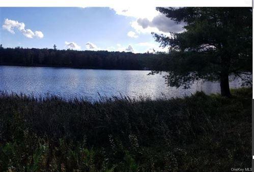 Photo of Pine Lake Drive, Wurtsboro, NY 12790 (MLS # H6114071)