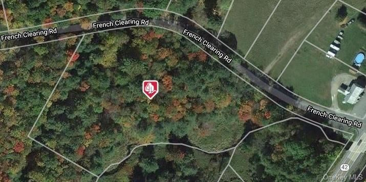 Photo for French Clearing Road, Forestburgh, NY 12777 (MLS # H6082073)