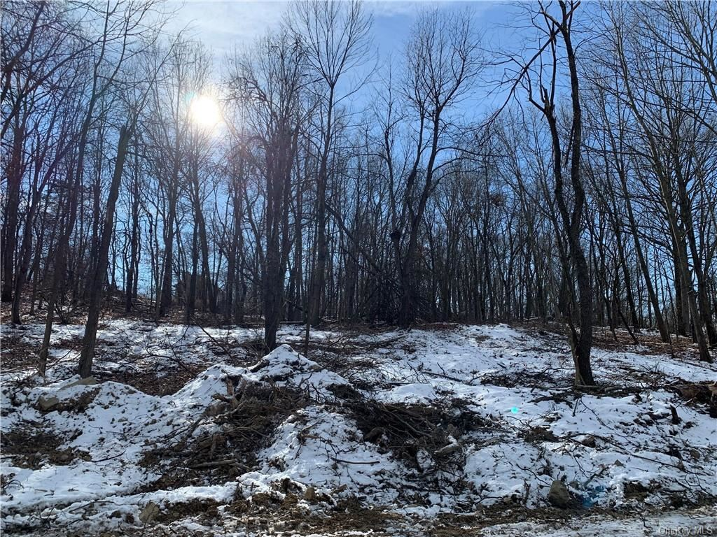Photo of 979 State Route 32, Wallkill, NY 12589 (MLS # H6090078)