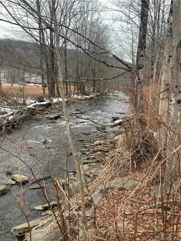 Photo for Mountaindale Road, Wurtsboro, NY 12790 (MLS # H6090100)