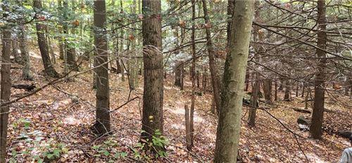Tiny photo for Clark Road Tr 21, Fallsburg, NY 12788 (MLS # H6076106)