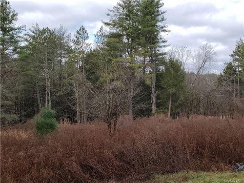 Tiny photo for Mitchell Pond E, Cochecton, NY 12726 (MLS # H6083111)
