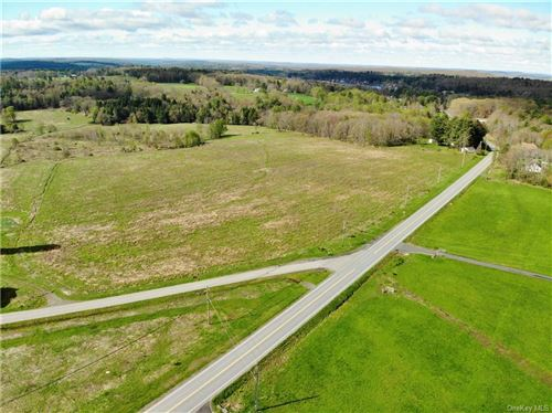 Tiny photo for Short Cut Road, Cochecton, NY 12726 (MLS # H6113111)