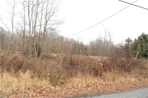 Tiny photo for Panther Hill Road Tr 56A, Mountain Dale, NY 12763 (MLS # H6071128)