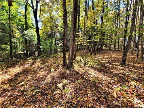 Tiny photo for Kaufman Road, Monticello, NY 12701 (MLS # H6076129)