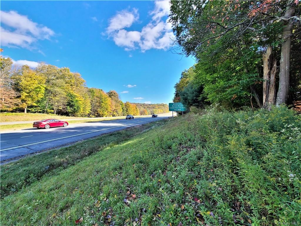 Photo for Kaufman Road, Monticello, NY 12701 (MLS # H6076129)