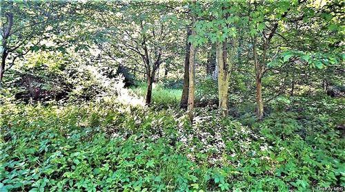 Tiny photo for Edwards Road, Monticello, NY 12701 (MLS # H6077135)