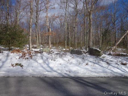 Photo of Wolf Lake Road, Rock Hill, NY 12775 (MLS # H6077137)
