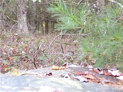 Tiny photo for Split Rock Drive, Highland, NY 12528 (MLS # H6083137)
