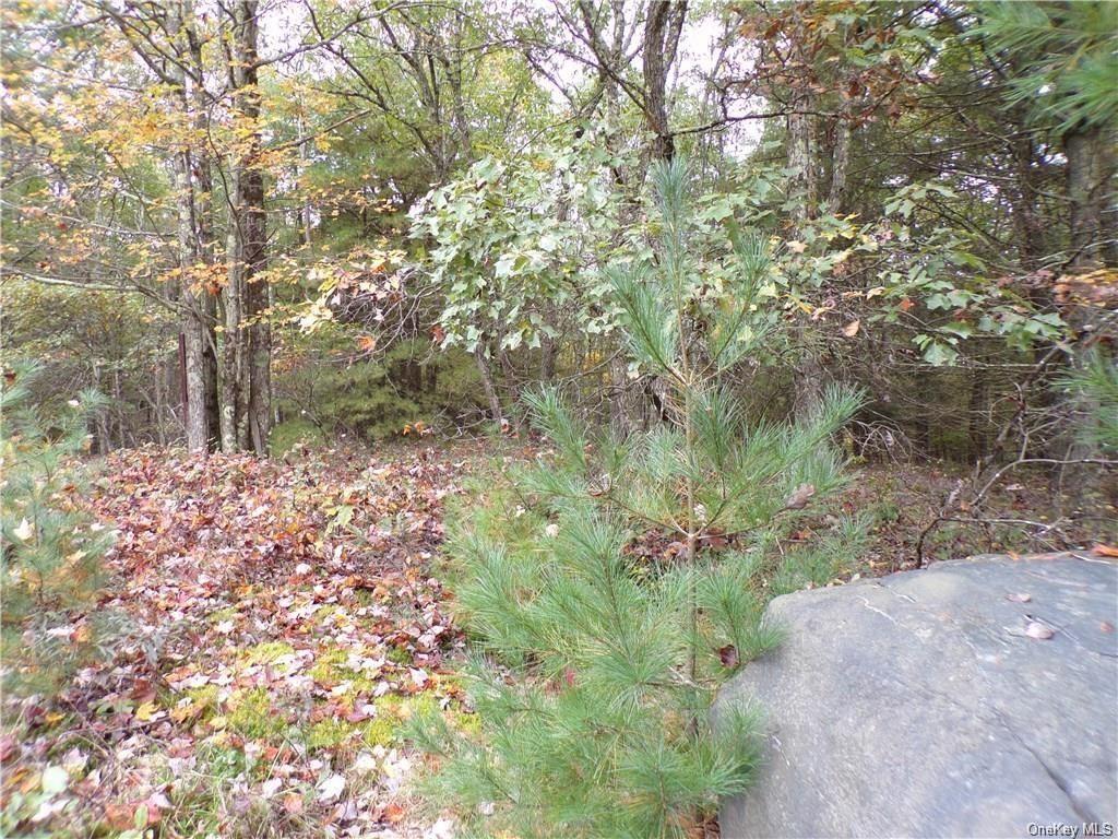 Photo for Split Rock Drive, Highland, NY 12528 (MLS # H6083137)