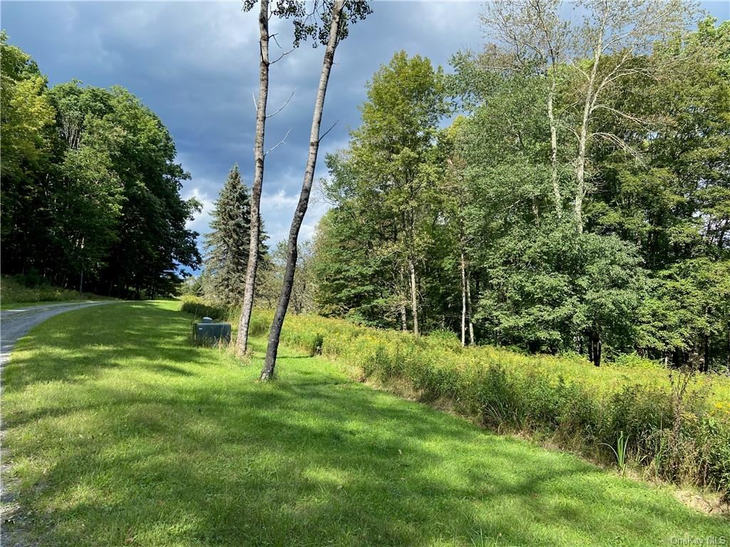 Photo for Andie Lane, Bethel, NY 12720 (MLS # H6104142)
