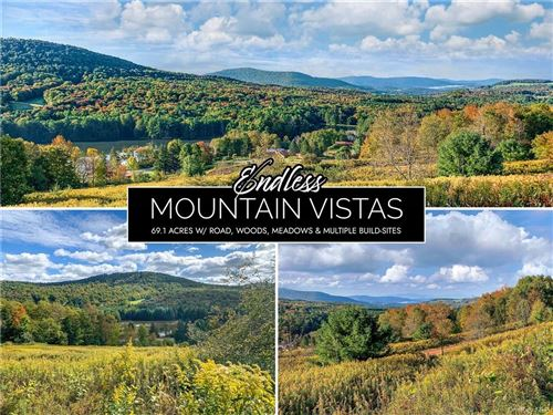 Photo of 7 Castle Mountain Road, Call Listing Agent, NY 12167 (MLS # H6150167)