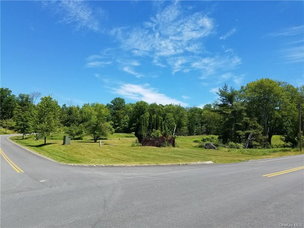 Photo for Rock Hill Drive, Rock Hill, NY 12775 (MLS # H6087170)