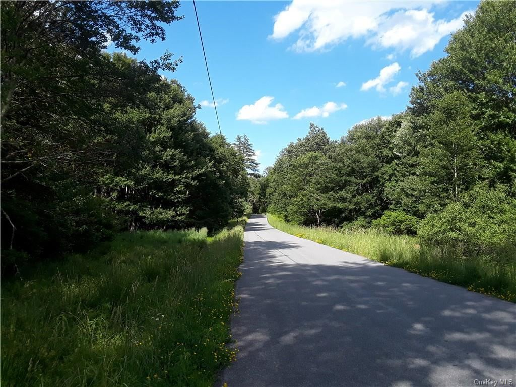 Photo for Laird Road Tr 56, Bethel, NY 12720 (MLS # H6048181)