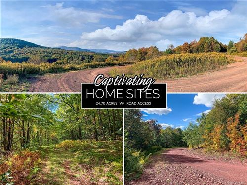 Photo of 11B Castle Mountain Road, Call Listing Agent, NY 12167 (MLS # H6150182)