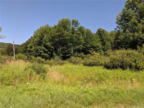 Tiny photo for Blackberry Lake Road, Jeffersonville, NY 12748 (MLS # H6083198)